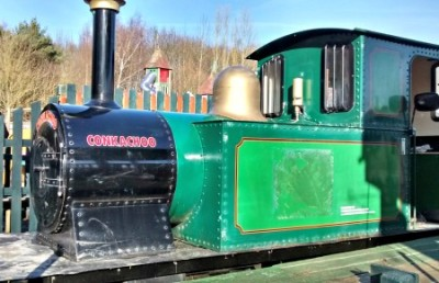 Conkerchoo Train at Conkers