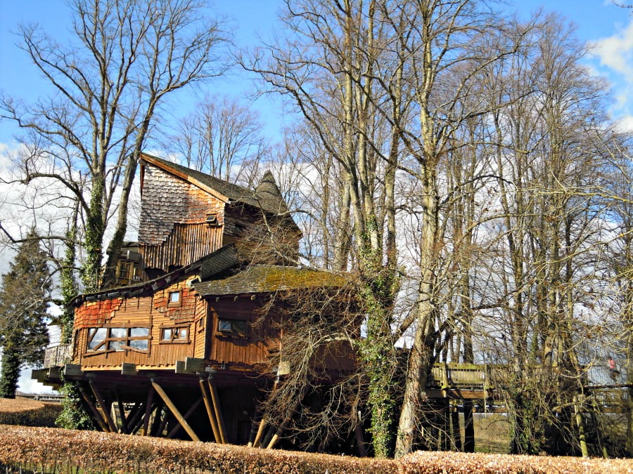 The Treehouse at Alnwick Castle and Garden