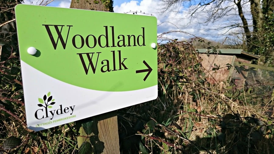 The Woodland Walk at Clydey Cottages in Pembrokeshire
