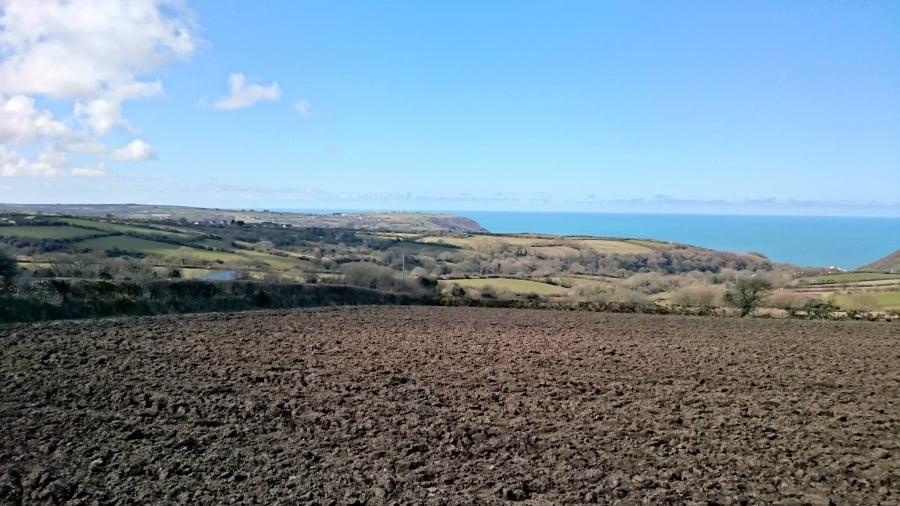 Pembrokeshire View