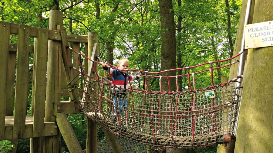 Daniel on the rope bridge at Chatsworth Farmyard