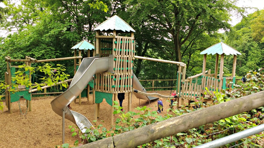 The Woodland Playground at the Heights of Abraham