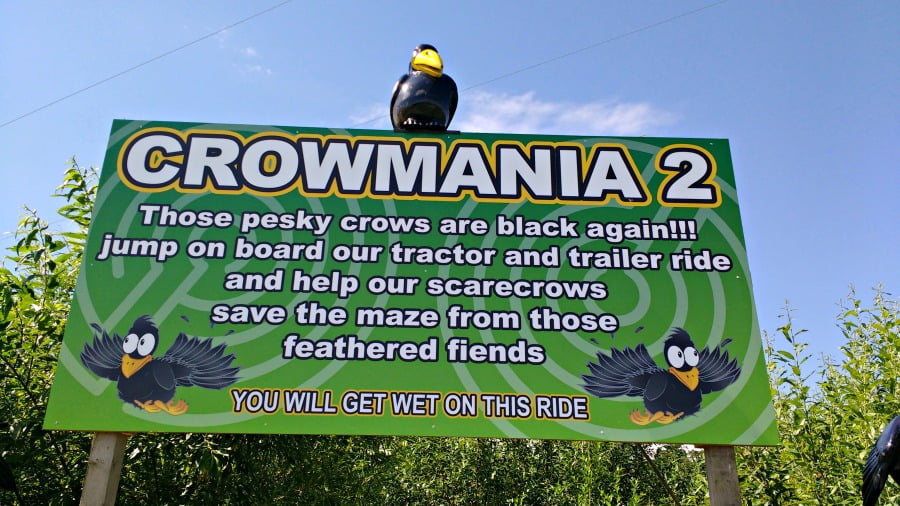 The Crowmania Ride at the York Maze