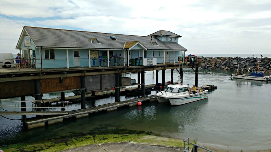 The Ventnor Haven Fishery