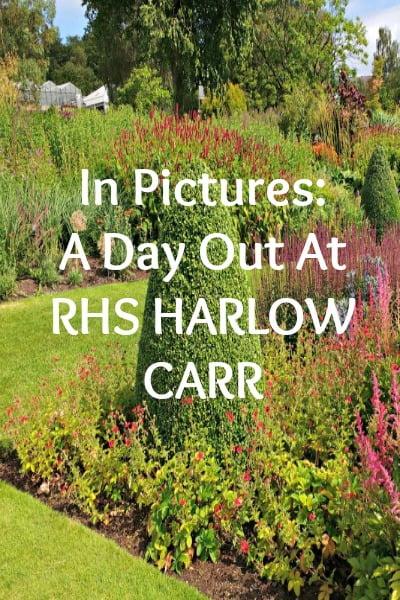 harlow-carr-pinterest