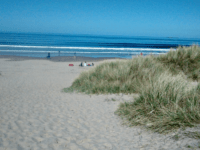 things to do in northumberland with babies and toddlers