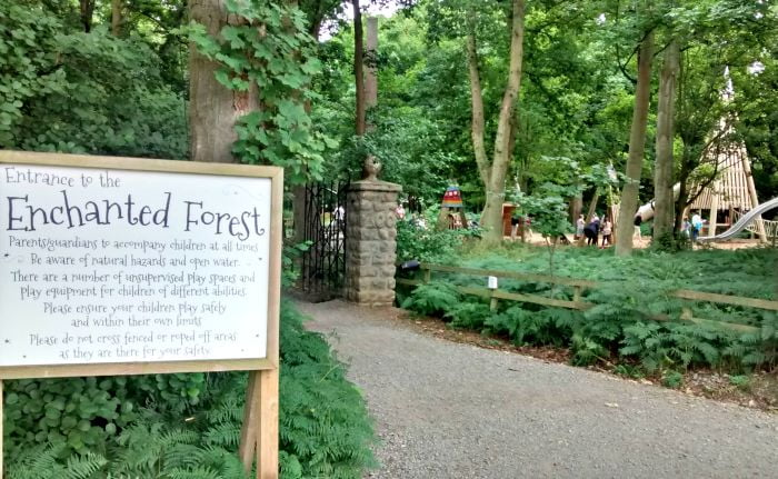 The Enchanted Forest at Stockeld Park