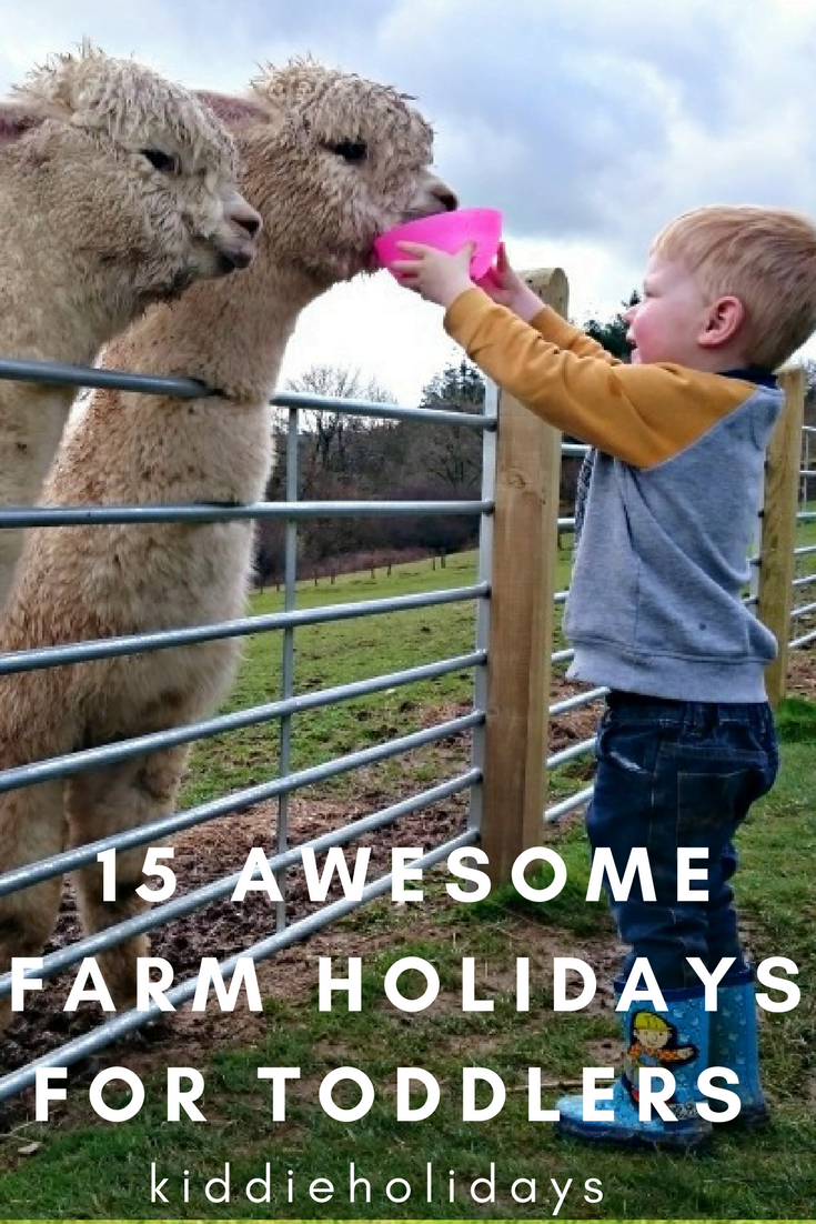 farm holidays for toddlers