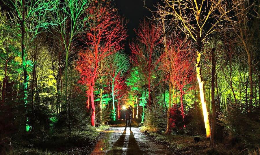 Santa's Woodland Experience Scotland