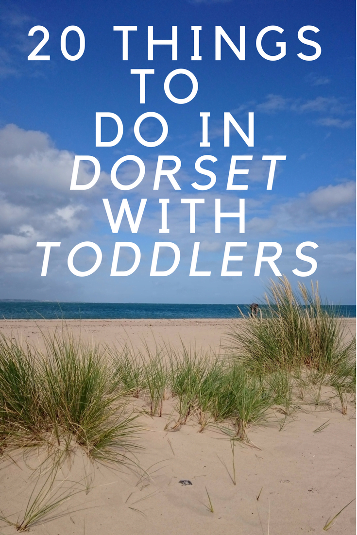 things do to in dorset with toddlers