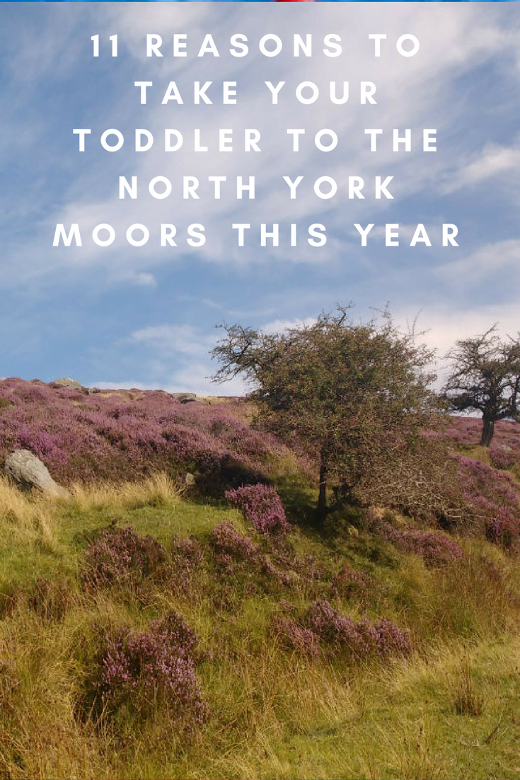 11 REASoNS TO take your toddler to the north york moors this year (1)