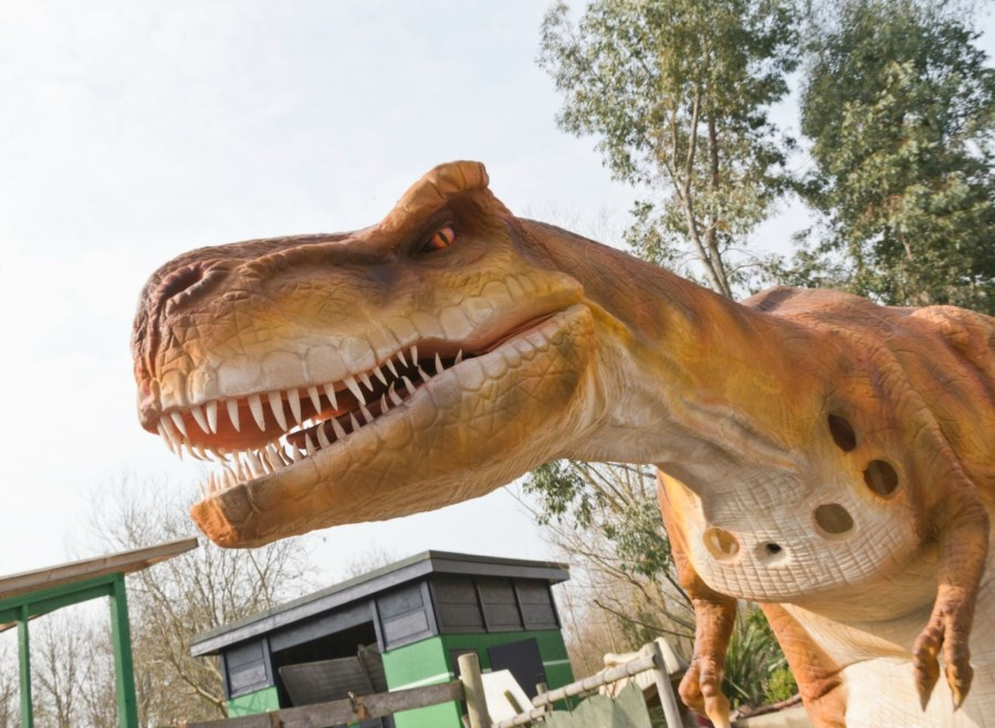 Dinosaur Days Out for toddlers
