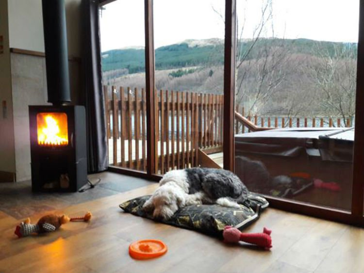 Pet friendly cabins at Forest Holidays