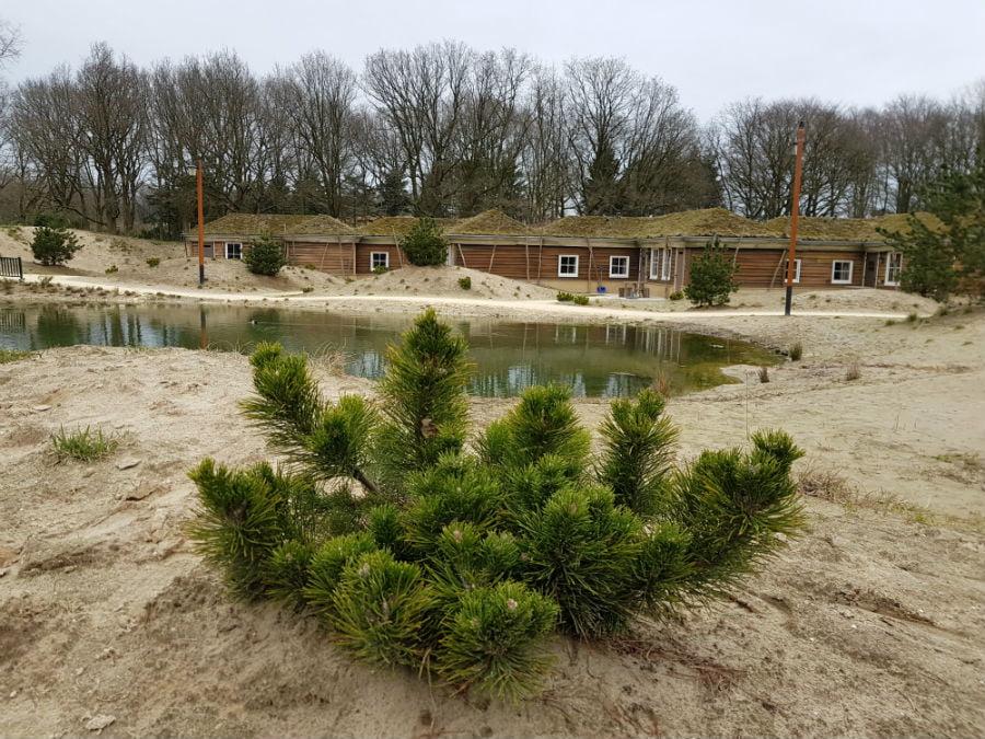 Holiday village Efteling Loonsche Land