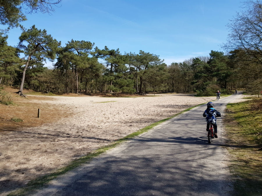 Cycling in the Drunen National Park in the Netherlands