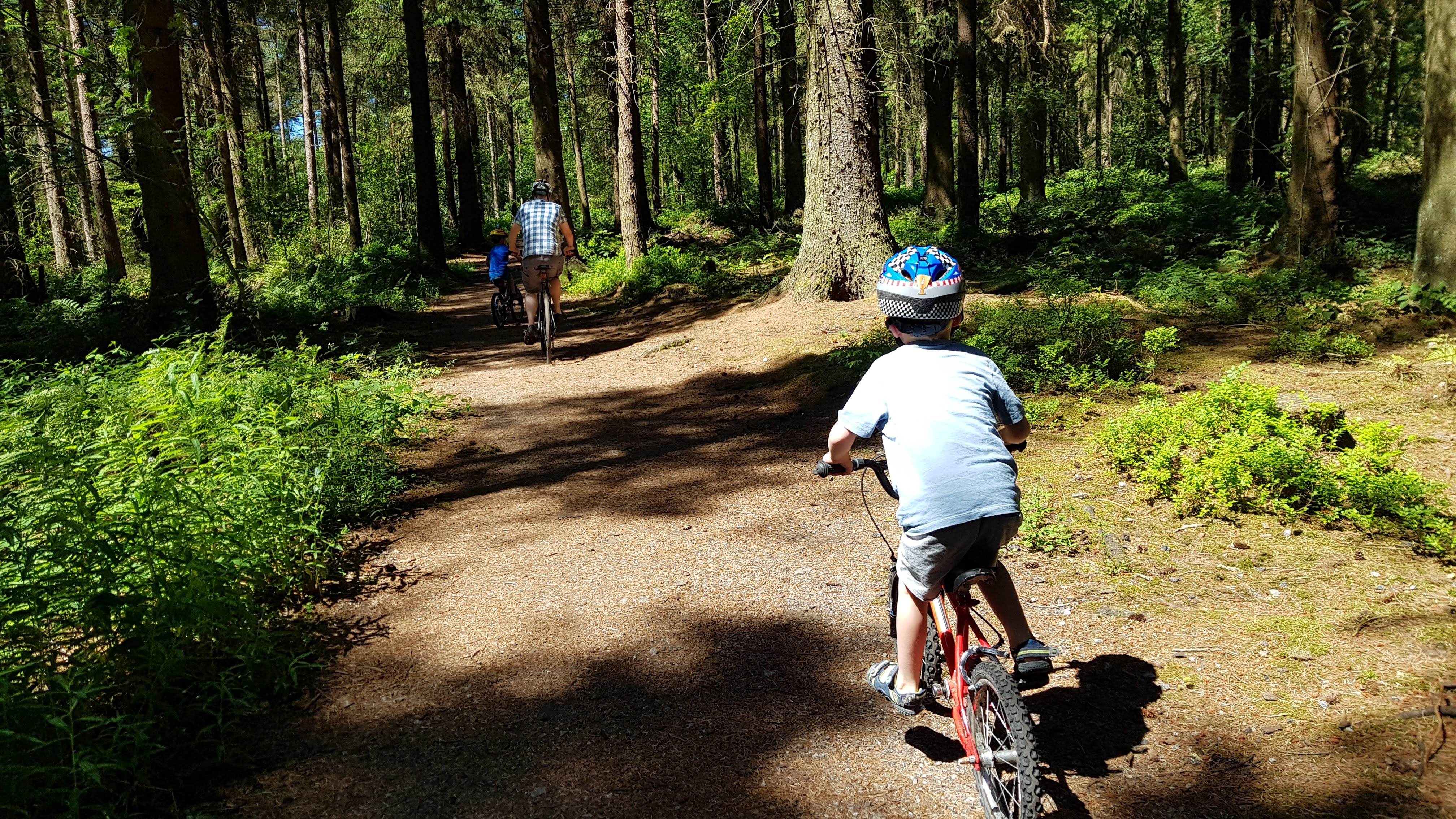 Cycling at Darwin Forest