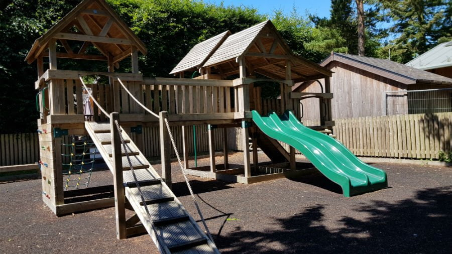 Playground at Darwin Forest