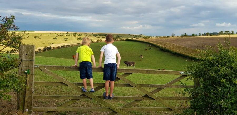 boys on gate