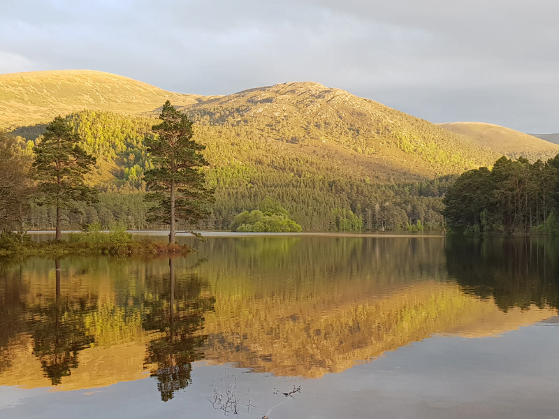 family friendly things to do cairngorms