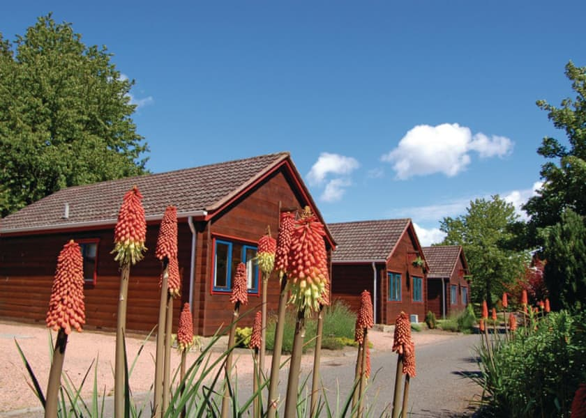 toddler friendly holiday park in scotland
